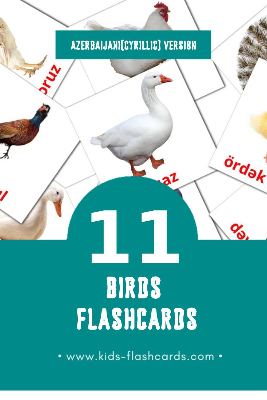 Visual Quşlar Flashcards for Toddlers (11 cards in Azerbaijani(cyrillic))
