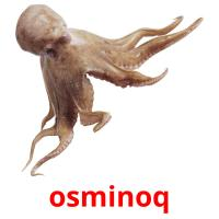 osminoq picture flashcards