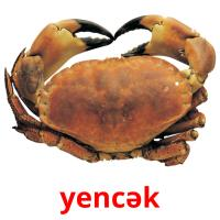 yencək picture flashcards