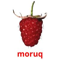 moruq picture flashcards