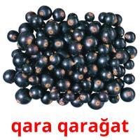 qara qarağat picture flashcards