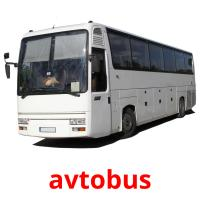 avtobus picture flashcards