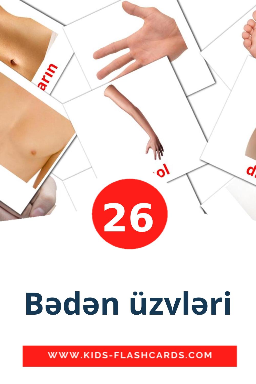 26 Bədən üzvləri Picture Cards for Kindergarden in azerbaijani
