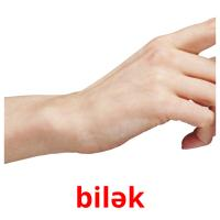 bilək picture flashcards