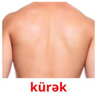 kürək picture flashcards