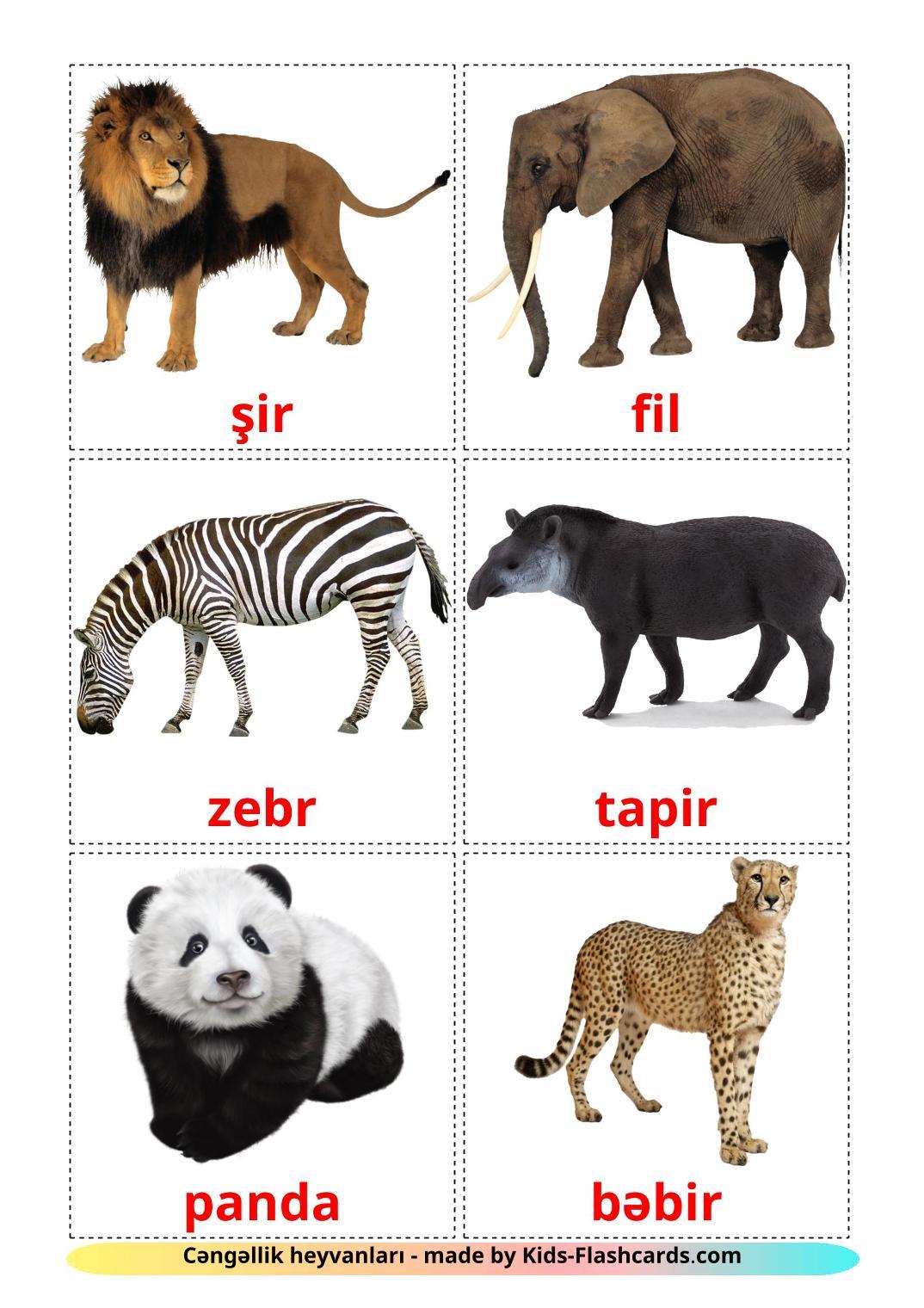 Jungle animals - 21 Free Printable azerbaijani Flashcards