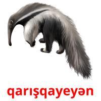 qarışqayeyən picture flashcards