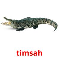 timsah picture flashcards