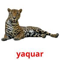 yaquar picture flashcards