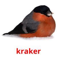 kraker picture flashcards