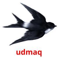 udmaq picture flashcards