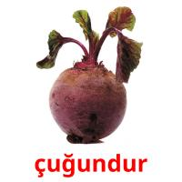 çuğundur picture flashcards