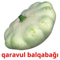 qaravul balqabağı picture flashcards