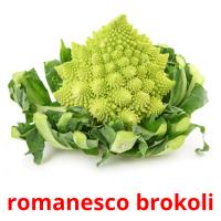 romanesco brokoli picture flashcards