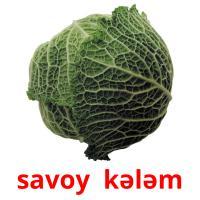 savoy  kələm picture flashcards
