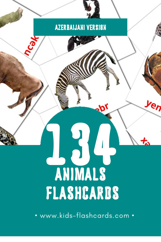 Visual Zwierzęta Flashcards for Toddlers (98 cards in Azerbaijani)