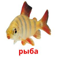 рыба picture flashcards