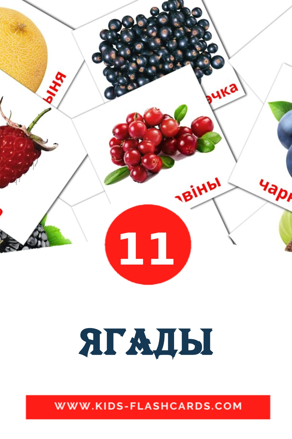 11 Ягады Picture Cards for Kindergarden in belarusian