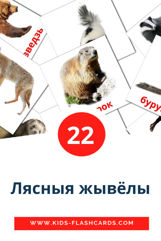 22 Лясныя жывёлы Picture Cards for Kindergarden in belarusian