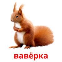 вавёрка picture flashcards