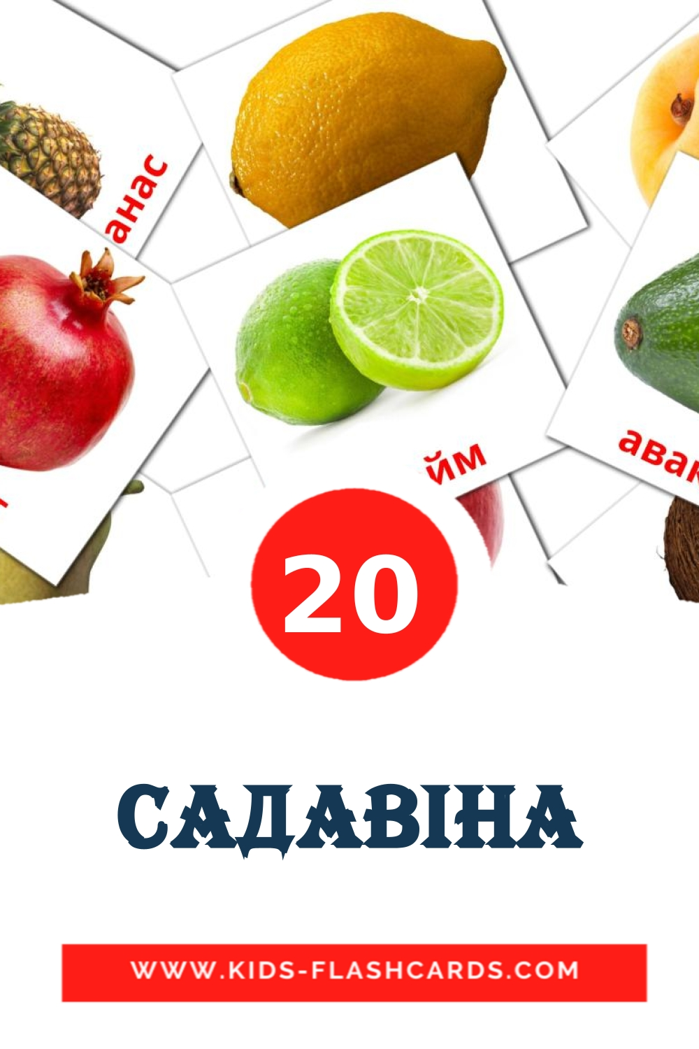 20 Садавiна Picture Cards for Kindergarden in belarusian