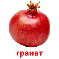 гранат picture flashcards