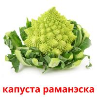 капуста раманэска picture flashcards