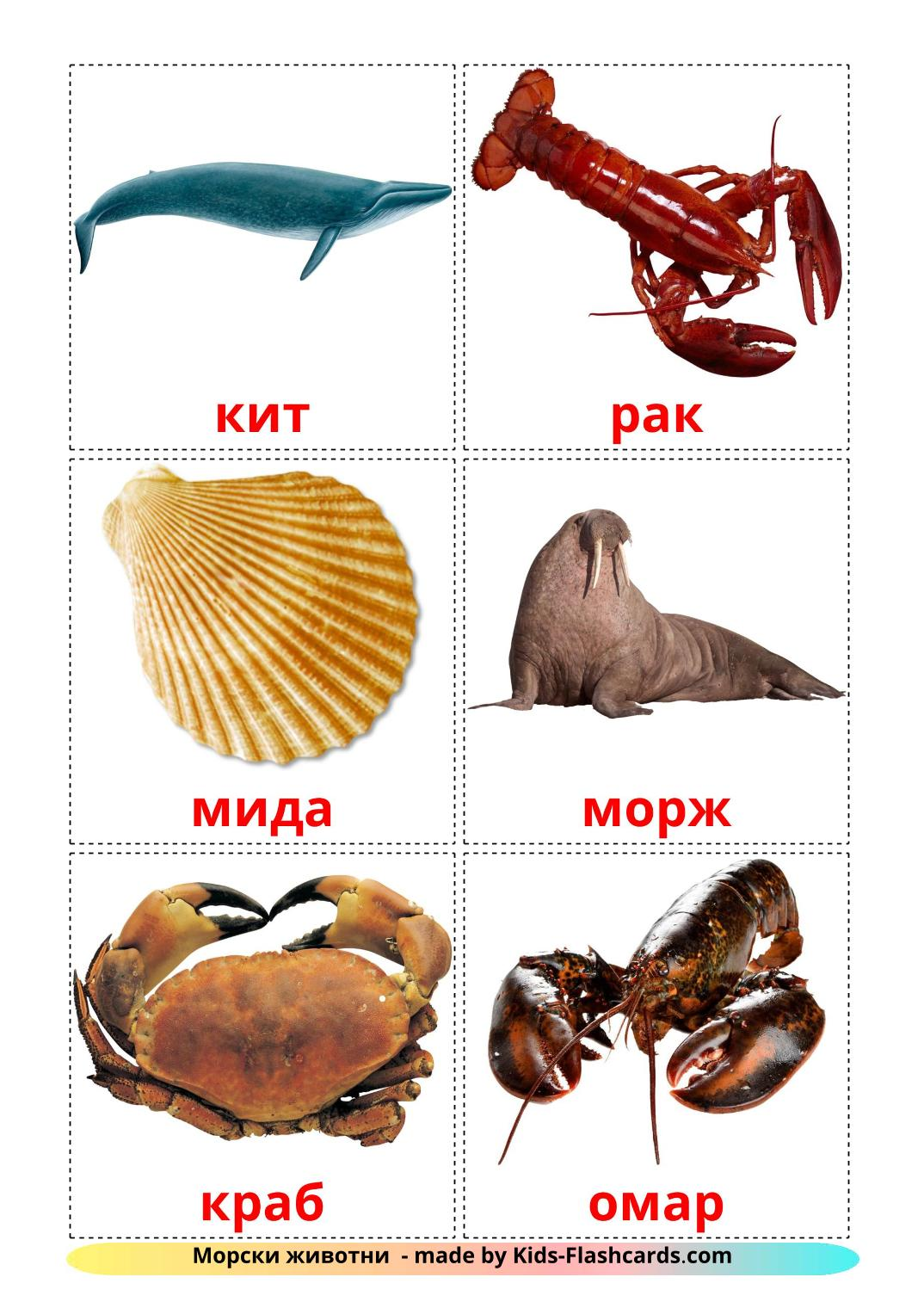 Sea animals - 23 Free Printable bulgarian Flashcards