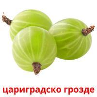 цариградско грозде picture flashcards