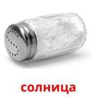 солница picture flashcards