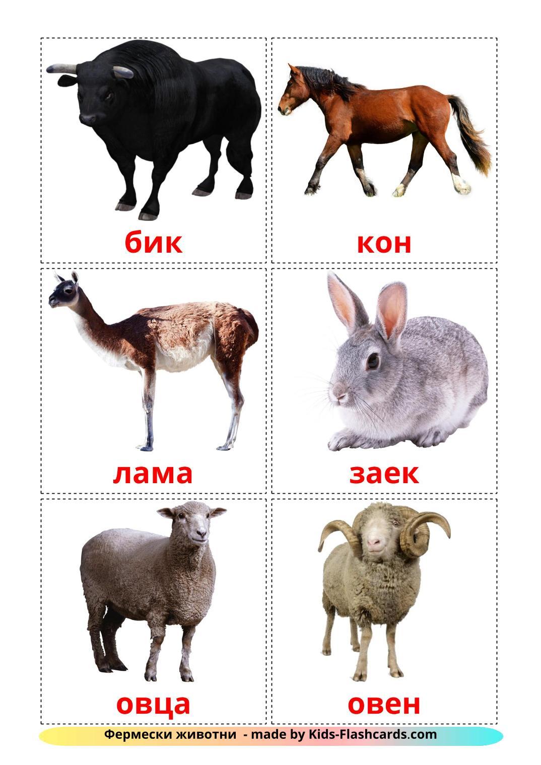 Farm animals - 15 Free Printable bulgarian Flashcards