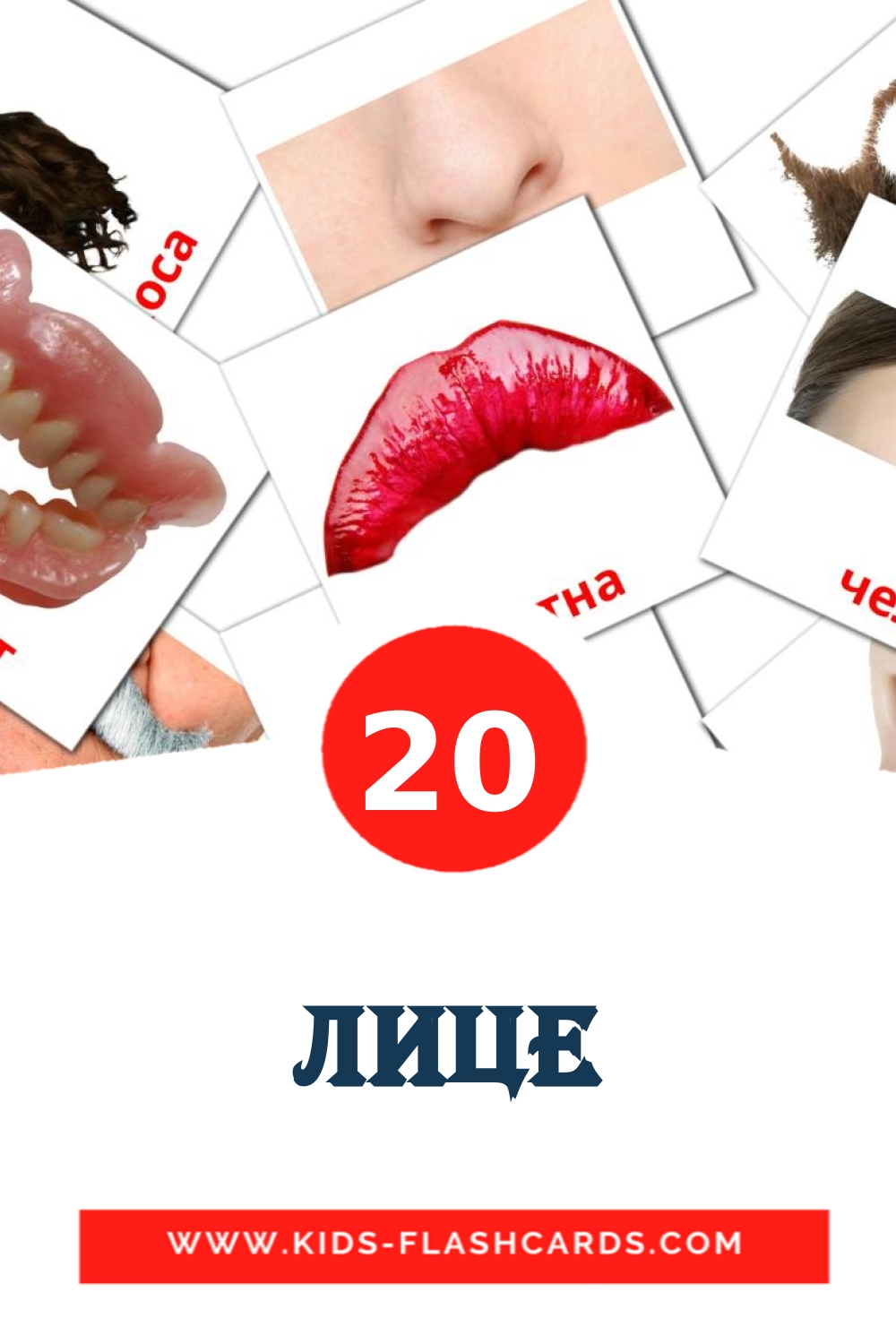 20 Лице Picture Cards for Kindergarden in bulgarian