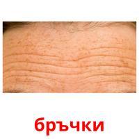 бръчки picture flashcards