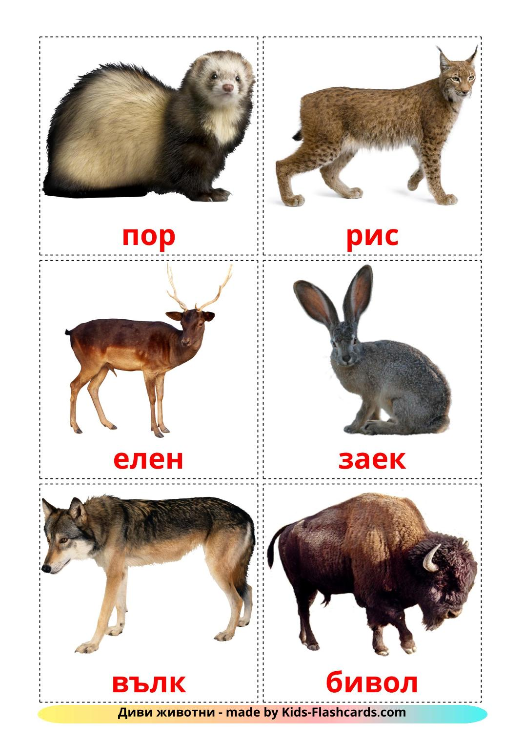 Forest animals - 22 Free Printable bulgarian Flashcards