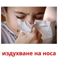 издухване на носа picture flashcards