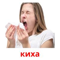 киха picture flashcards