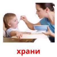 храни picture flashcards