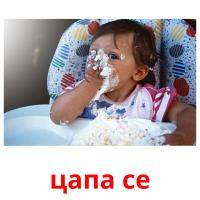 цапа се picture flashcards