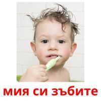 мия си зъбите picture flashcards