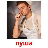 пуша picture flashcards