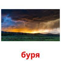 буря picture flashcards