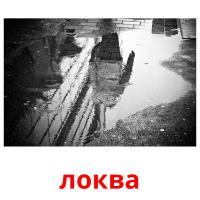 локва picture flashcards