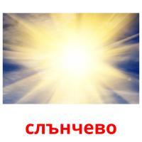 слънчево picture flashcards
