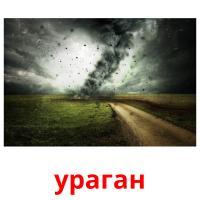 ураган picture flashcards