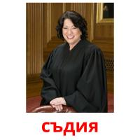 съдия picture flashcards