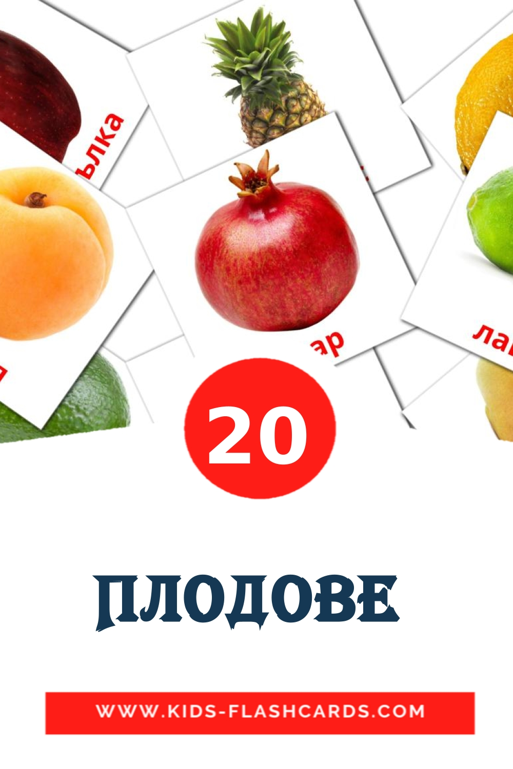 20 Плодове  Picture Cards for Kindergarden in bulgarian