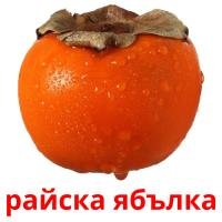 райска ябълка picture flashcards