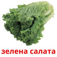 зелена салата picture flashcards