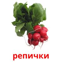 репички picture flashcards