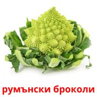 румънски броколи picture flashcards